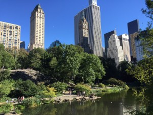 A beautiful Sunday afternoon in Central Park NYC