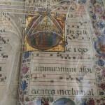 19 Duomo Siena 4