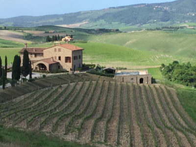 Podere Marcampo and vineyards